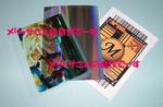 merissa_jisaku2.jpg